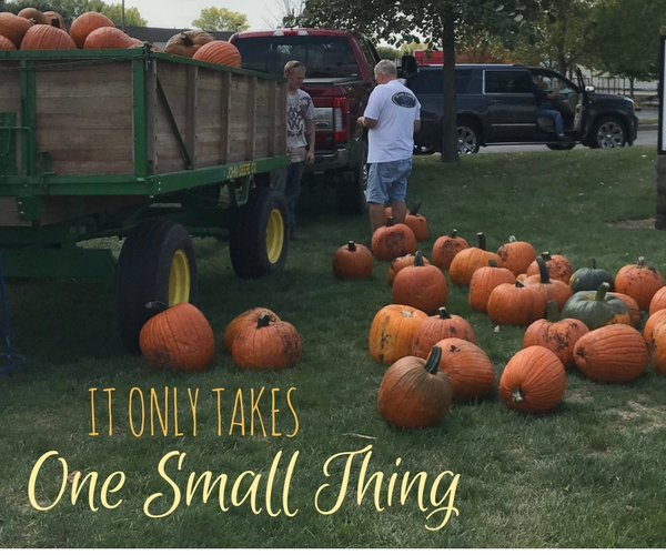 It Only Takes One Small Thing