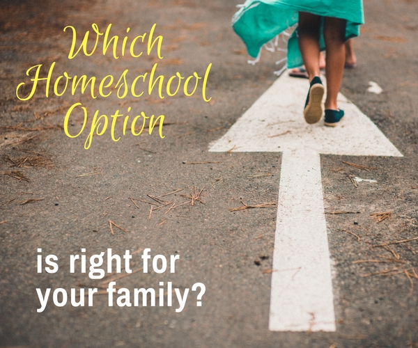 Which Homeschool Option Is Right for Your Family?